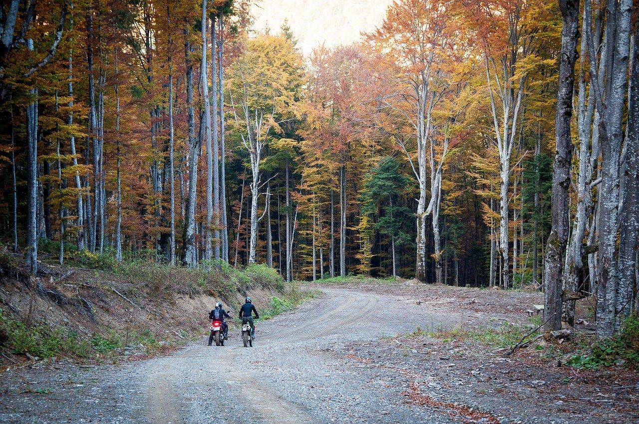 dirt bikes, motorbikes, bikers